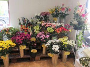 florist at barleymows chard