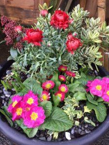 Decorative tub of flowers