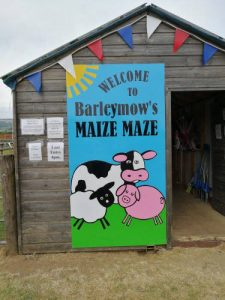 Maize Maze entrance at Barleymows