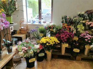 Flowers at Barleymows Farm Shop